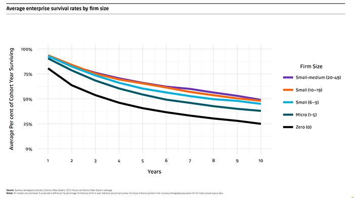 Business survival rates